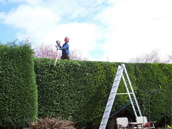 dublin garden maintenance